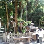大神神社 巳の神杉